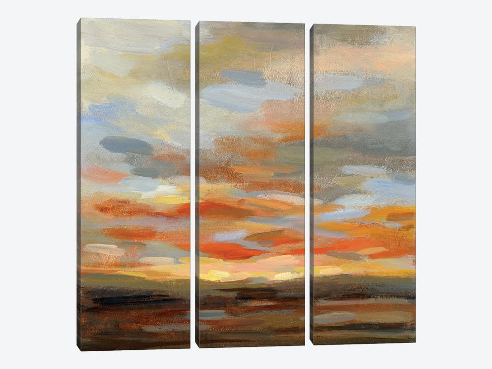 High Desert Sky II by Silvia Vassileva 3-piece Canvas Art