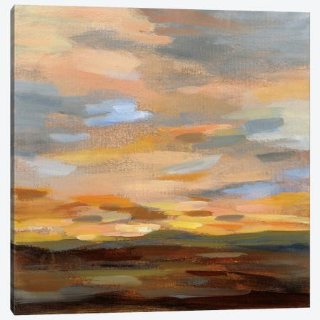 High Desert Sky III Canvas Print #SIV43} by Silvia Vassileva Art Print
