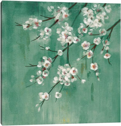 Cherry Cloud I Jade Canvas Art Print