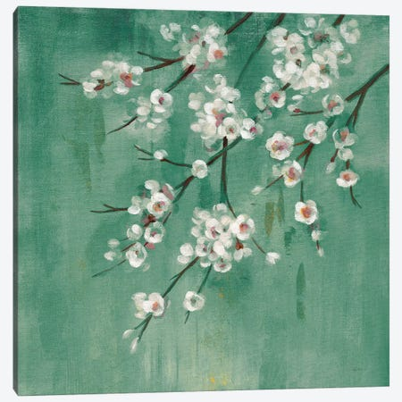 Cherry Cloud I Jade Canvas Print #SIV89} by Silvia Vassileva Art Print