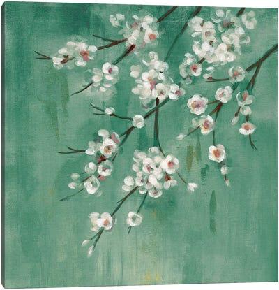 Cherry Cloud I Jade Canvas Art Print