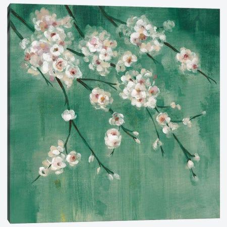 Cherry Cloud II Jade Canvas Print #SIV90} by Silvia Vassileva Canvas Artwork