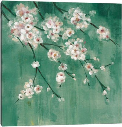 Cherry Cloud II Jade Canvas Art Print