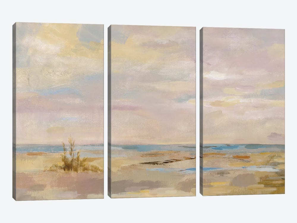 Dreamy Beach by Silvia Vassileva 3-piece Canvas Art