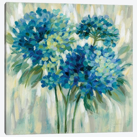 Burst of Hydrangeas Canvas Print #SIV98} by Silvia Vassileva Canvas Wall Art