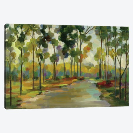 Path in the Forest Canvas Print #SIV9} by Silvia Vassileva Canvas Wall Art