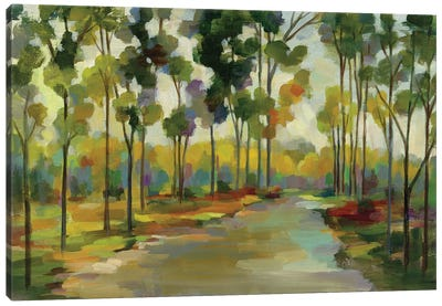 Path in the Forest Canvas Art Print