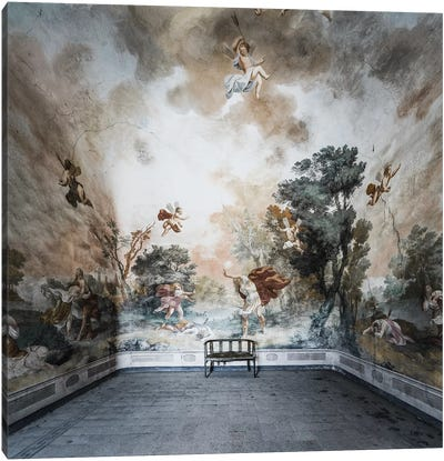 Damiani II Canvas Art Print