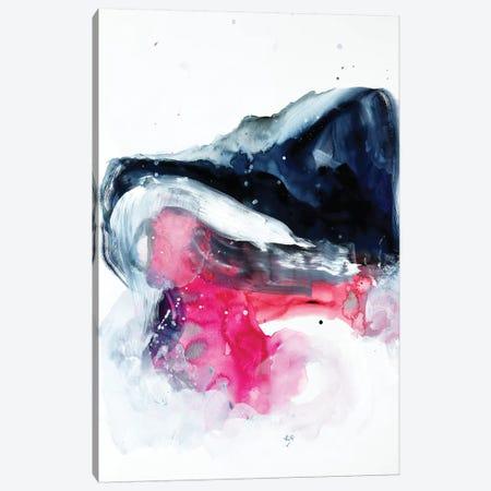 Distant Haze Canvas Print #SJA24} by Sana Jamlaney Canvas Art Print