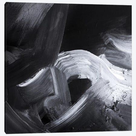 Abyss II Canvas Print #SJA81} by Sana Jamlaney Canvas Artwork
