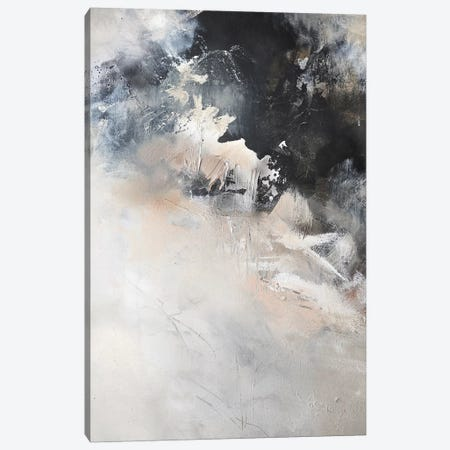 Crater Canvas Print #SJA96} by Sana Jamlaney Canvas Art