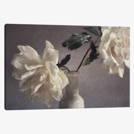 Blooms On My Table Canvas Print #SJR10} by Sarah Jarrett Canvas Wall Art