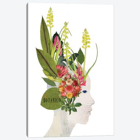 Botanico Canvas Print #SJR11} by Sarah Jarrett Canvas Artwork