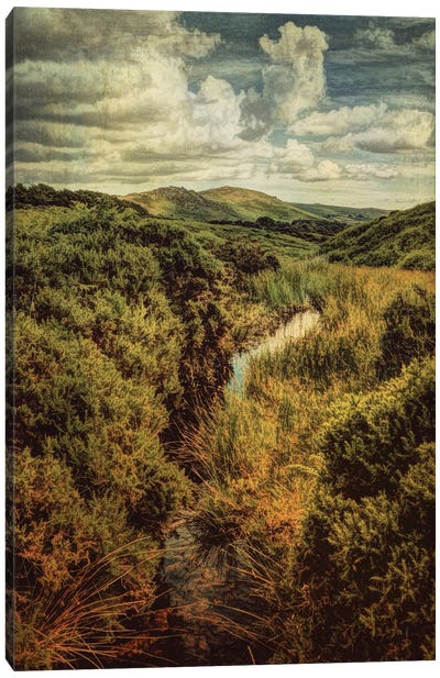 Dartmoor Diary Canvas Art Print