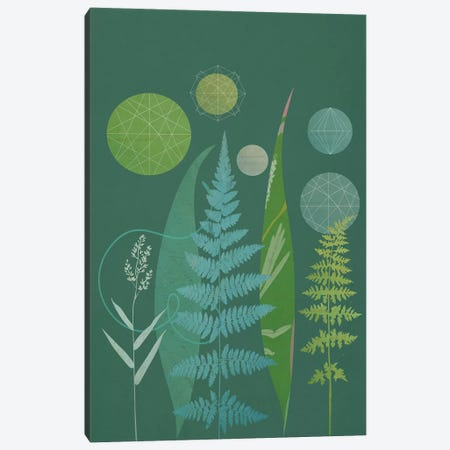 Ferns 3-Piece Canvas #SJR19} by Sarah Jarrett Canvas Wall Art