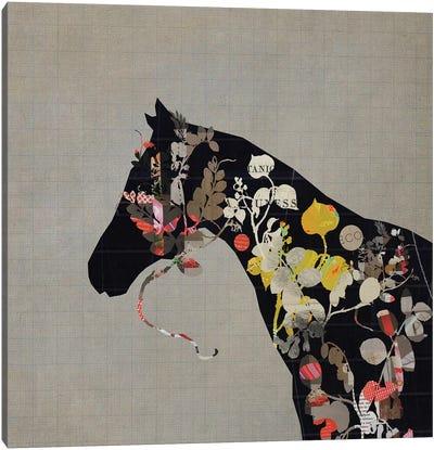 Land Of Horses Canvas Art Print