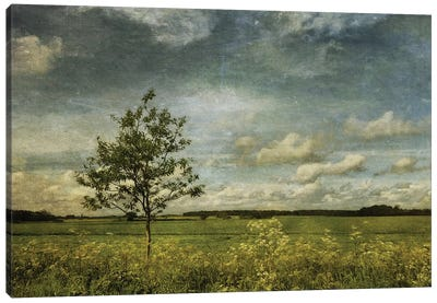 Summer In Norfolk Canvas Art Print