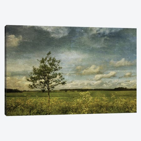 Summer In Norfolk Canvas Print #SJR61} by Sarah Jarrett Canvas Print