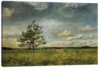 Summer In Norfolk Canvas Art Print