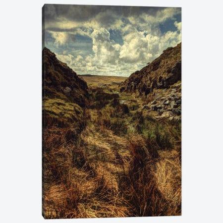 Summer On The Moor Canvas Print #SJR62} by Sarah Jarrett Art Print