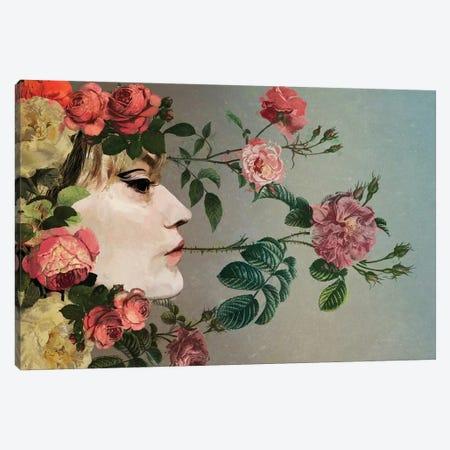 Rose Canvas Print #SJR91} by Sarah Jarrett Canvas Wall Art