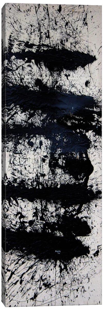 Abandonment Canvas Art Print