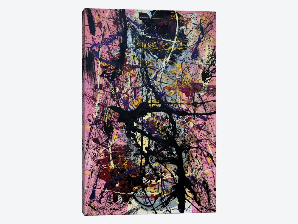Anaphrodisia by Shawn Jacobs 1-piece Canvas Art