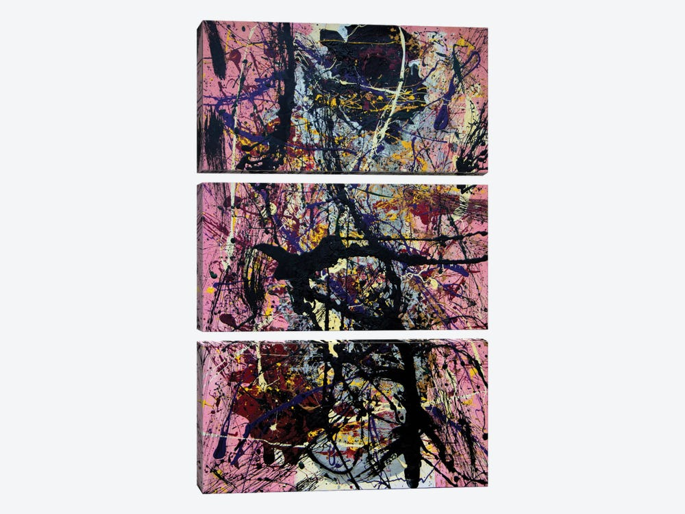 Anaphrodisia by Shawn Jacobs 3-piece Canvas Art