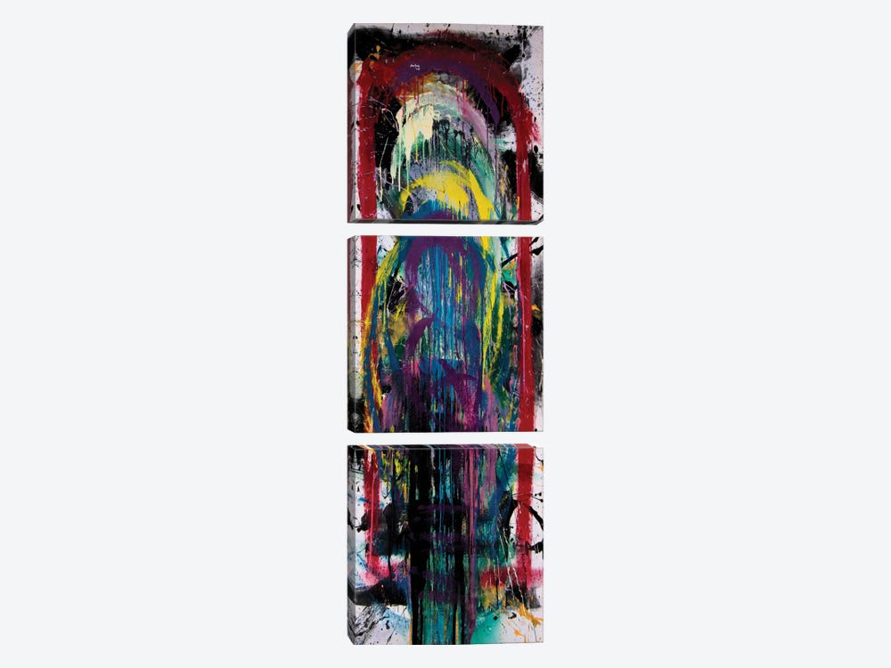 120081 by Shawn Jacobs 3-piece Canvas Art Print