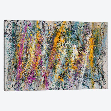Beauty of Indecency Canvas Print #SJS62} by Shawn Jacobs Canvas Art