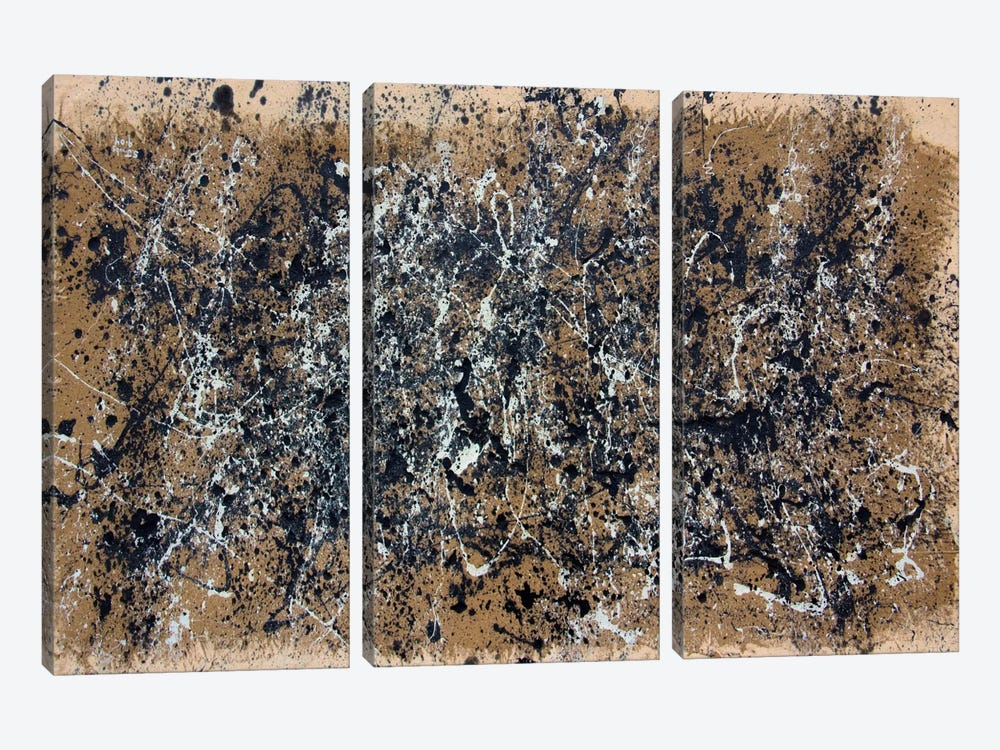 Fossil #3 by Shawn Jacobs 3-piece Canvas Print