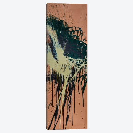 520102 Canvas Print #SJS6} by Shawn Jacobs Art Print