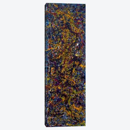 Night Movements Canvas Print #SJS77} by Shawn Jacobs Canvas Art