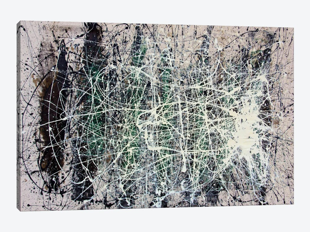 The Web by Shawn Jacobs 1-piece Canvas Art