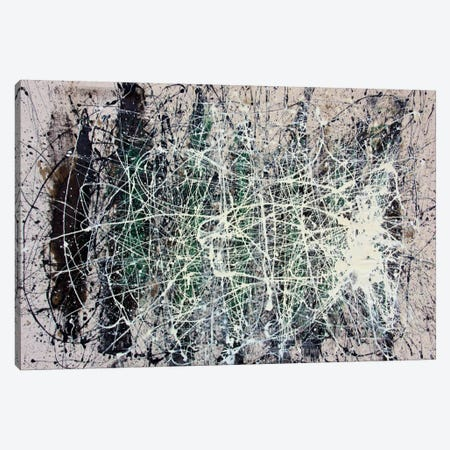 The Web Canvas Print #SJS86} by Shawn Jacobs Canvas Art Print