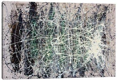 The Web Canvas Art Print