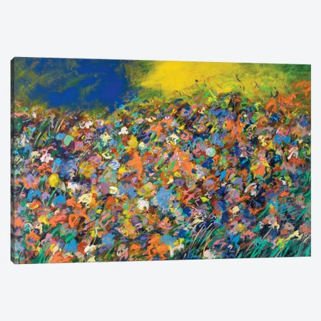 Candied Colored Field Canvas Print #SKB14} by Stefanie Kirby Canvas Wall Art
