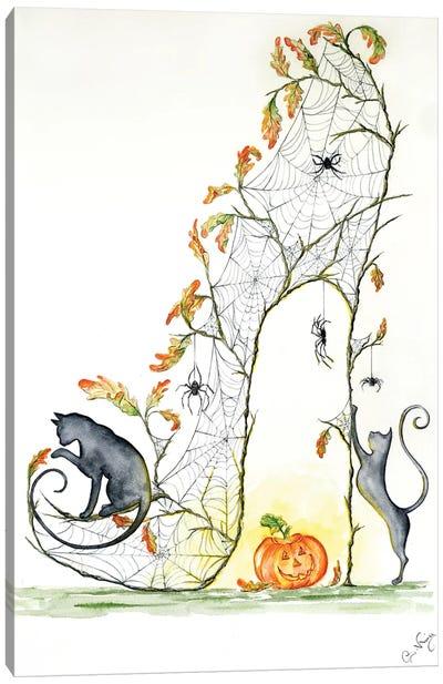 Gossamer Slipper Canvas Art Print
