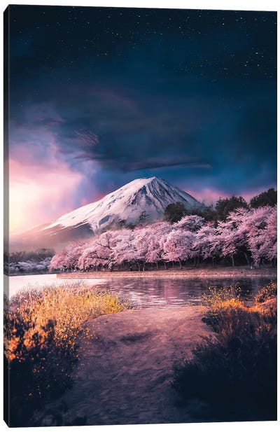 A Beauty In Pink Canvas Art Print