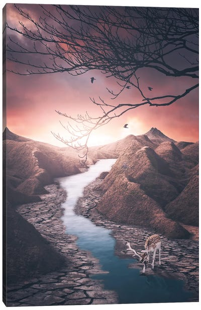 Tale Of The Water Canvas Art Print