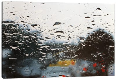 Drenched Canvas Art Print