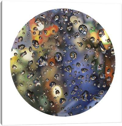 Tear Drop IV Canvas Art Print
