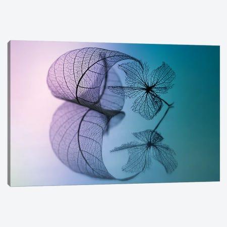 Story Of Leaf And Flower 3-Piece Canvas #SKO3} by Shihya Kowatari Canvas Artwork