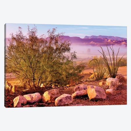 Big Bend Desert  Canvas Print #SKR15} by Susanne Kremer Canvas Artwork
