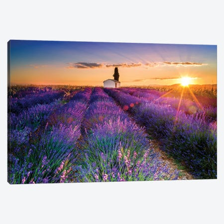 Plateau de Valensole Lavender Field Sunrise I Canvas Print #SKR177} by Susanne Kremer Canvas Artwork