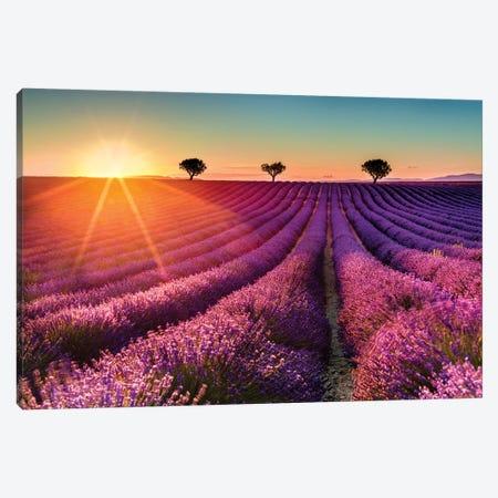 Plateau de Valensole Lavender Field Sunset II Canvas Print #SKR178} by Susanne Kremer Canvas Print