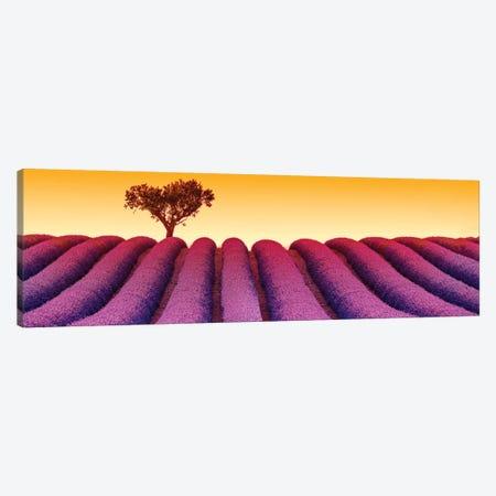 Plateau de Valensole Provence Lavender Field III Canvas Print #SKR179} by Susanne Kremer Art Print