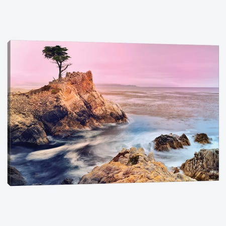 The Lone Cypress, Pebble Beach Canvas Print #SKR246} by Susanne Kremer Canvas Art