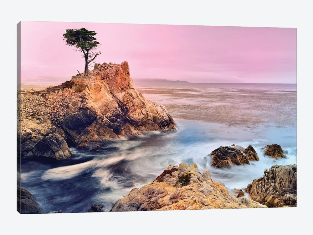 The Lone Cypress, Pebble Beach by Susanne Kremer 1-piece Canvas Art