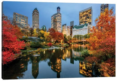 Central Park  Canvas Art Print